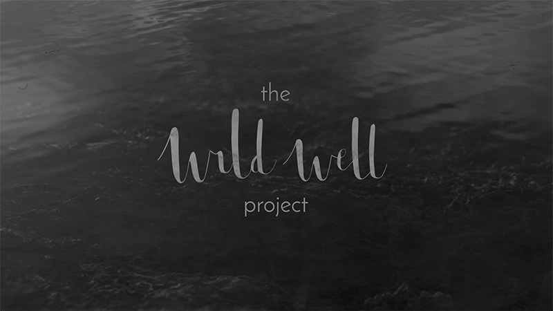 The Wild Well Project